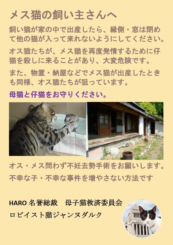 KIT⑥ ポスター「放し飼いの飼い主に 母子猫をお守りください」貼付・配布 3枚
