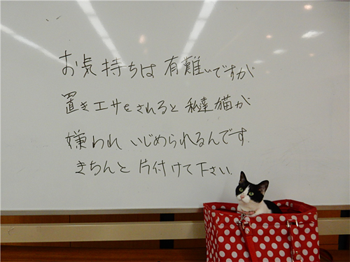 ②「置き餌は他人に迷惑だけでなく、猫がもっとも迷惑 」啓発 プロジェクトs