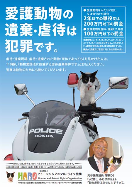 動物虐待防止プロジェクト