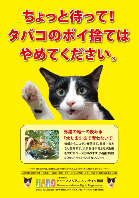 「たばこのポイ捨て禁止 水たまりの水で命をつないでいる猫のために」プロジェクト