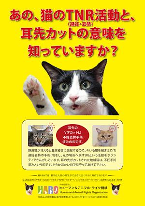 Ⅳ 猫ボランティアの社会的地位向上 プロジェクト
